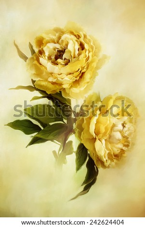 Digital painting of beautiful yellow peonies. - stock photo