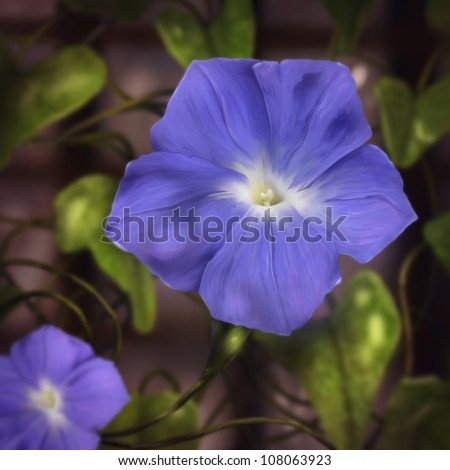 digital painting of blue morning glory flowers surrounded by vines