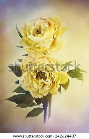 Digital painting of delicate beautiful yellow peonies.