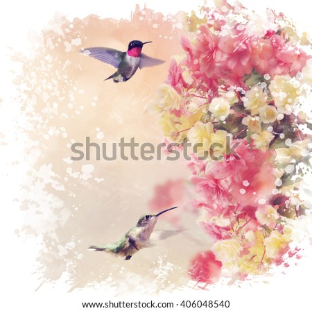 Digital Painting of  Hummingbirds in Flight Around Flowers - stock photo