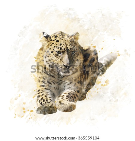 Digital Painting of Leopard Portrait - stock photo