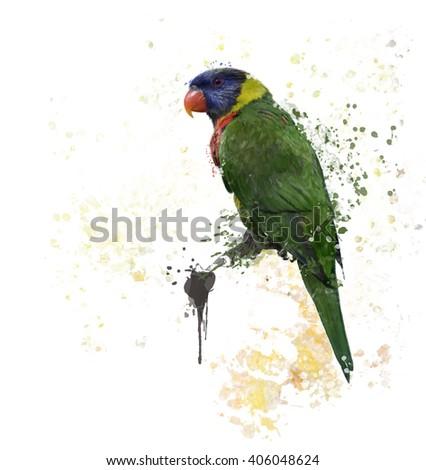 Digital Painting of  Rainbow Lorikeet - stock photo
