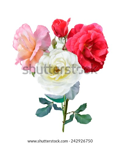 Digital Painting Of Rose Flowers - stock photo