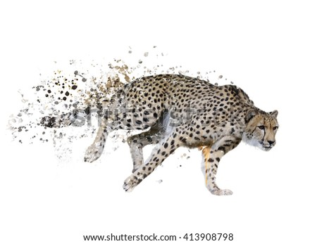 Digital Painting of  Running Cheetah - stock photo