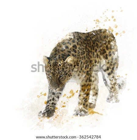 Digital Painting of Walking Leopard - stock photo