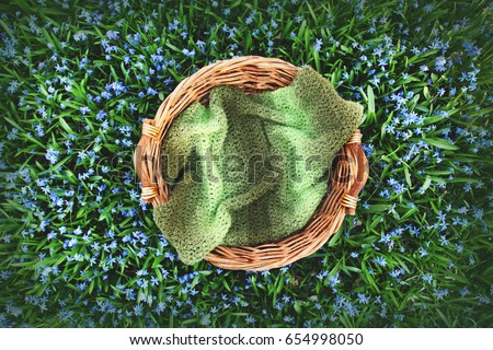 Digital Photography Background Of Spring Flower Field And Woven Wooden Basket Prop