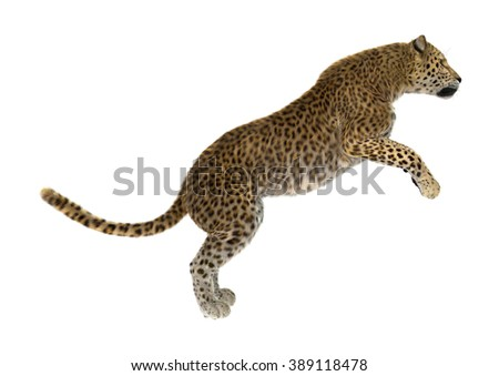Digital render of a big cat leopard jumping isolated on white background - stock photo