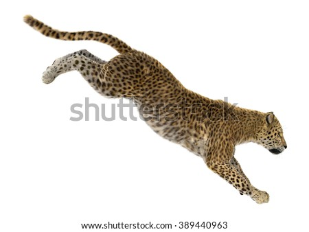 Digital render of a big cat leopard jumping isolated on white background