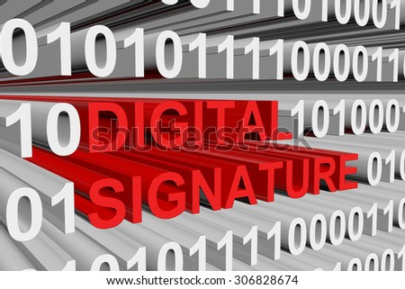 Digital Signature Standard is presented in the form of binary code