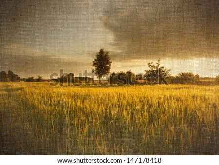 Digital structure of painting. Field of corn landscape - stock photo