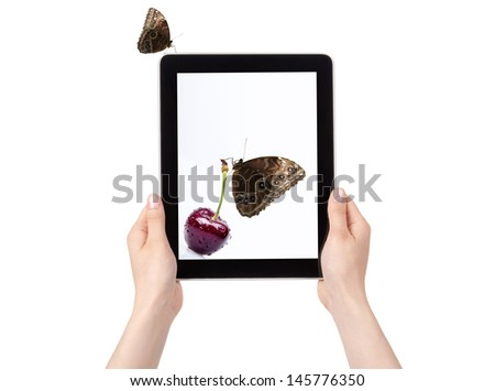 digital tablet with cherry and butterfly isolated on a white background - stock photo