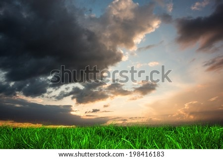 Digitally generated green grass under blue and orange sky