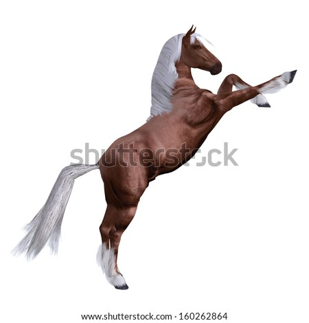 Digitally rendered illustration of a beautiful red horse on white background. - stock photo