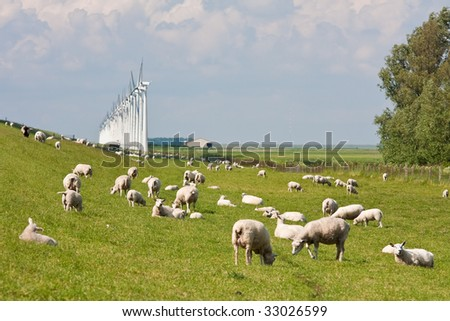 Dike with sheep and windmills in the Netherlands - stock photo