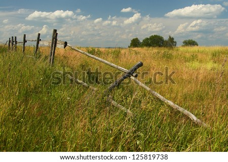 Dilapidated wooden fence on an overgrown meadow - stock photo