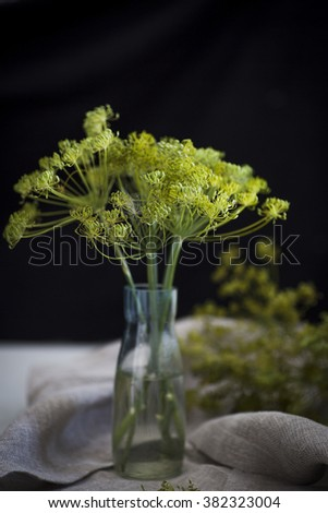 Dill flowers in a bottle with water. - stock photo