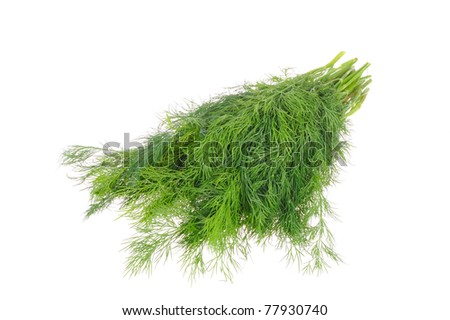 Dill isolated on the white background
