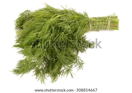 dill on a white background