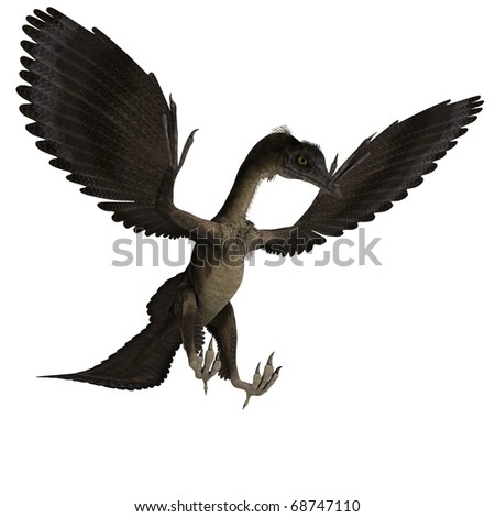 Dinosaur Archaeopteryx. 3D rendering with clipping path and shadow over white