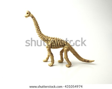 dinosaur bone on white background