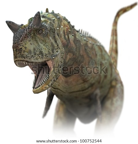 Dinosaur Carnivore close up - stock photo