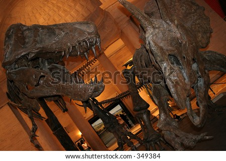 Dinosaur exhibit at Nature History Museum of Los Angeles - stock photo