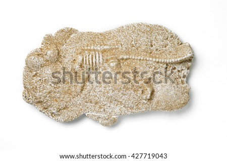 dinosaur fossils isolated on white