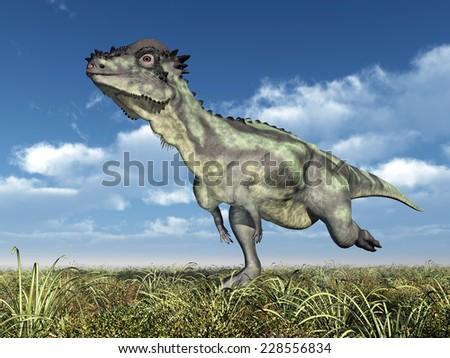 Dinosaur Pachycephalosaurus Computer generated 3D illustration - stock photo
