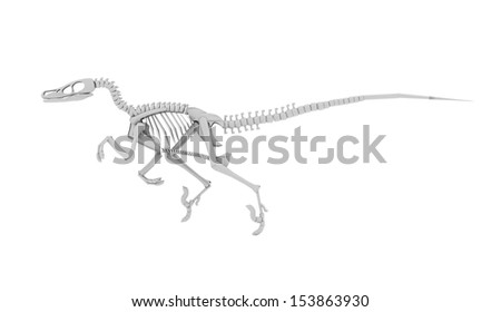 Dinosaur skeleton concept rendered on white background - stock photo
