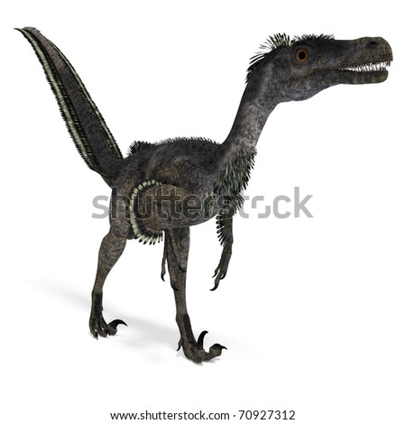 Dinosaur Velociraptor. 3D rendering with clipping path and shadow over white