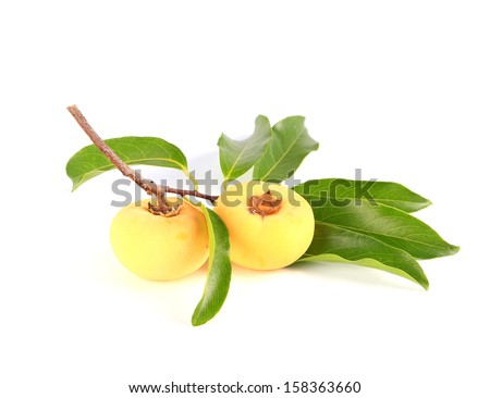 Diospyros decandra Lour. Thai fruit on white background