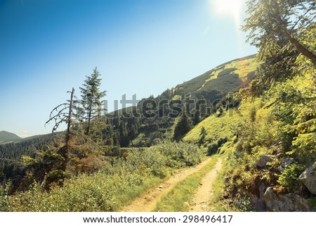 dirt mountain road Ukrainian Carpathians West