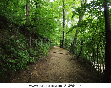 Dirt Path leads upwards in Forest in Rock Creek Park, Washington DC. - stock photo