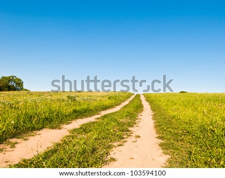 dirt road in a field against a blue sky - stock photo