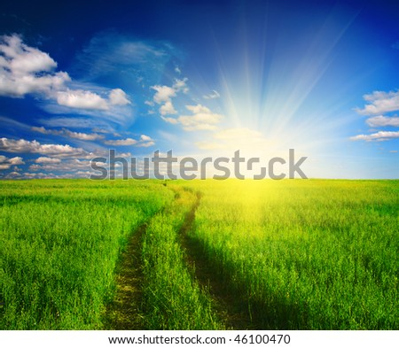 dirt road in grass and sunset - stock photo