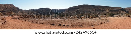 Dirt road in Negev desert in Israel                                - stock photo