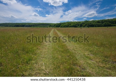 Dirt road in the field on forest background, summer season. Dirt road. Summer landscape with green grass, road and clouds. Road through fresh,green meadows in june, beautiful sunny day. - stock photo