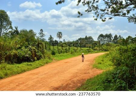 Dirt road in the jungle of Uganda, Africa - stock photo