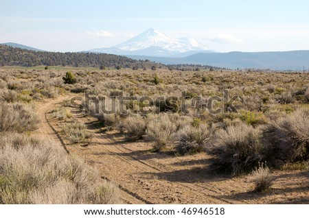 dirt road leading to Mount Shasta