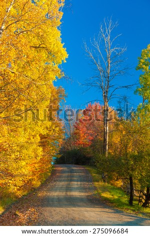 Dirt road on a sunny fall foliage morning, Stowe, Vermont, USA. - stock photo