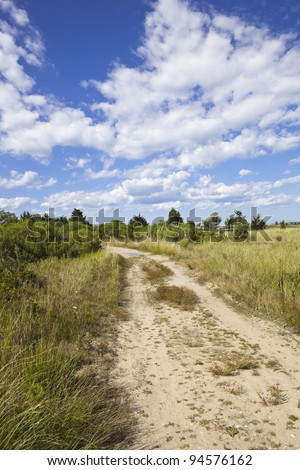 dirt road on martha's vineyard, cape cod, massachusetts, united states. - stock photo