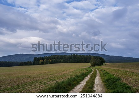 Dirt road through field in forest.