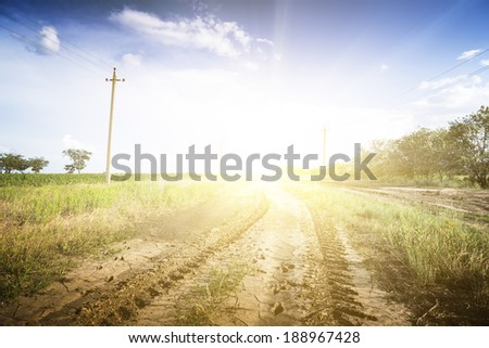 Dirt road through the green fields. Sunny. - stock photo