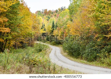 Dirt road through woods in northern New Hampshire