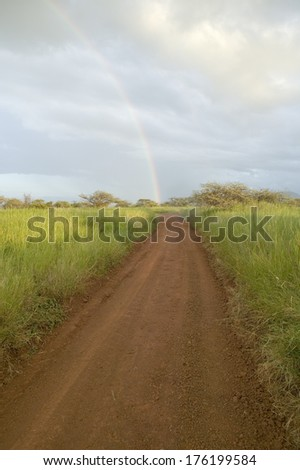 Dirt road to a rainbow through green grasslands of Lewa Wildlife Conservancy in North Kenya, Africa - stock photo