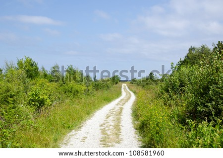Dirt road to the beach trough green meadow - stock photo