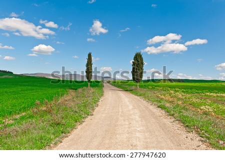 Dirt Road with Cypress Leading to the Farmhouse in Tuscany - stock photo