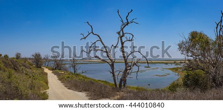 Dirt walking path leads down to vast tidal pools in a California wetlands near Huntington Beach. - stock photo