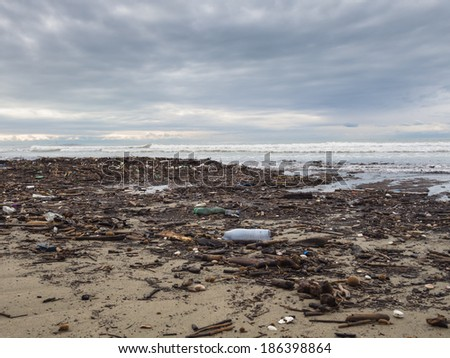 dirty beach - pollution along the beach - stock photo