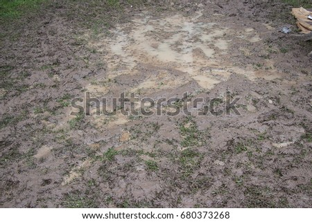 Dirty Field Garden Grass Sun Field
